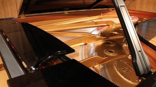Steinway-Piano-Pic-2